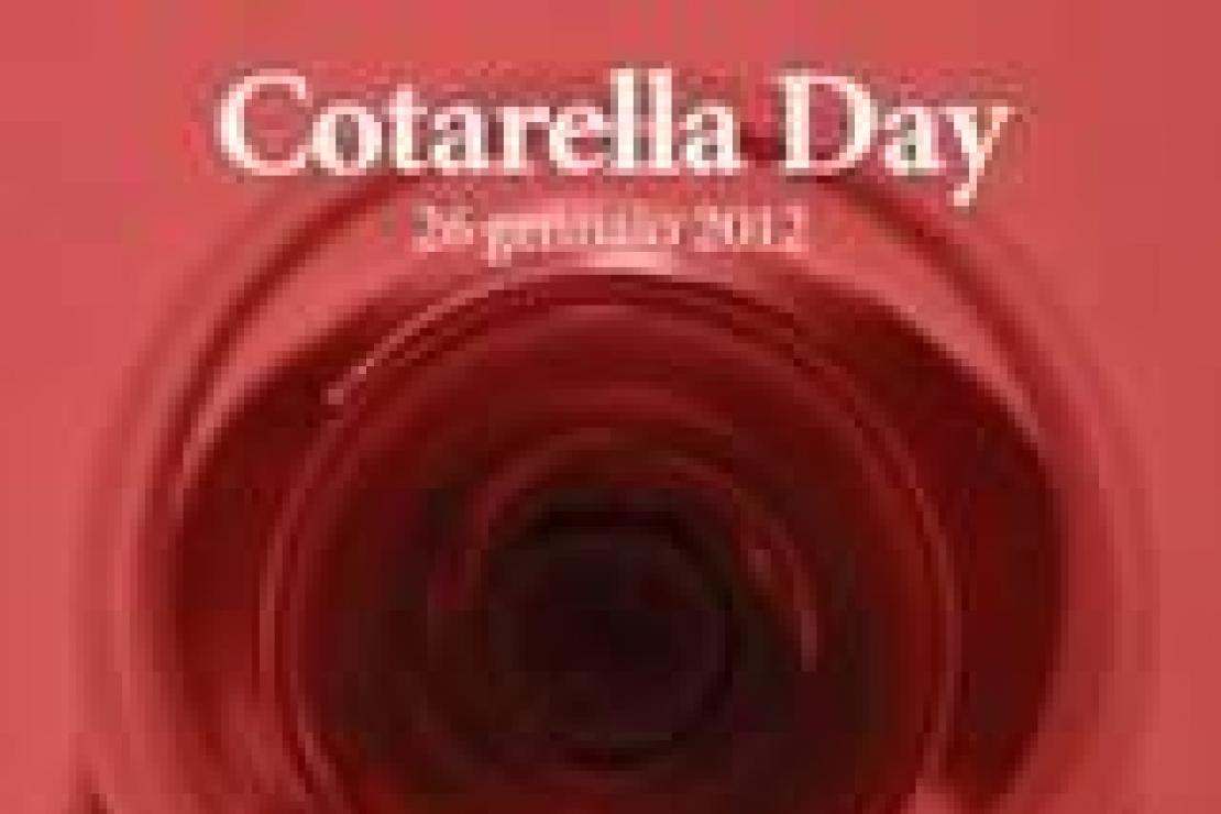Cotarella Day, il magnifico 2001