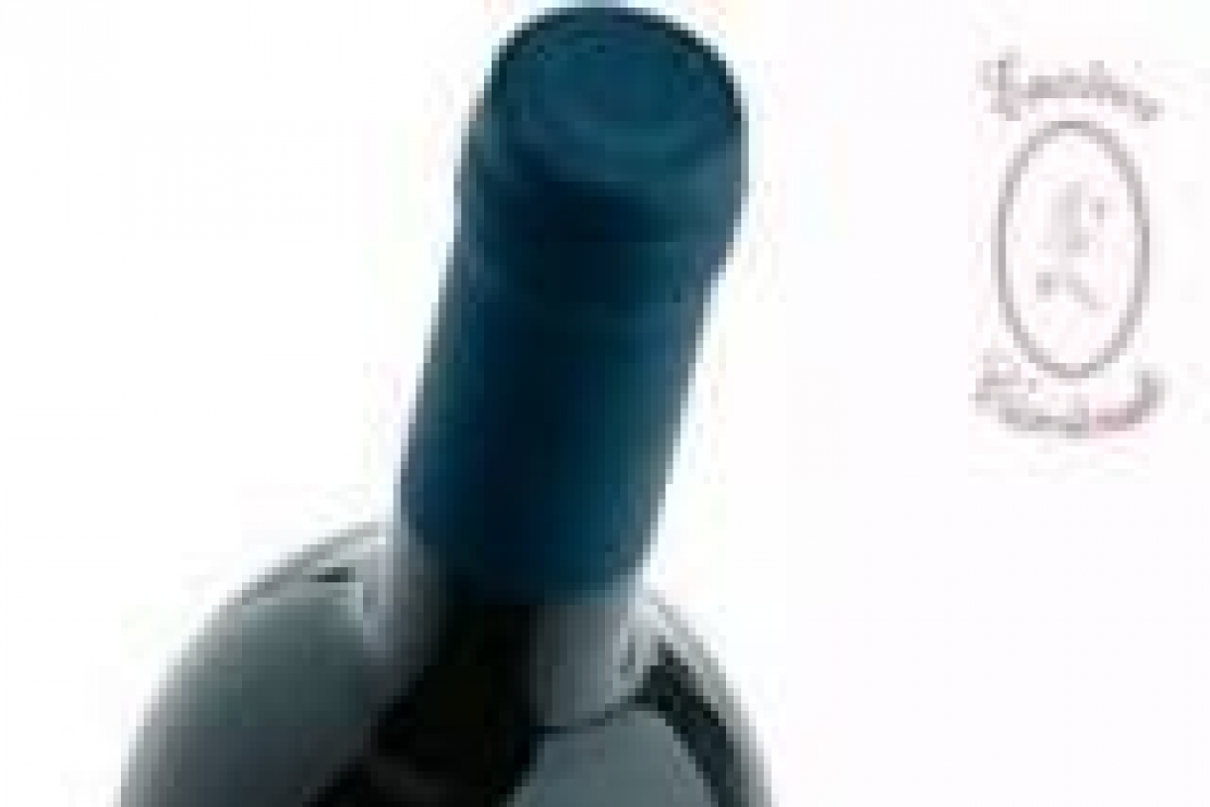 Dieci grandi vini a Casteldario