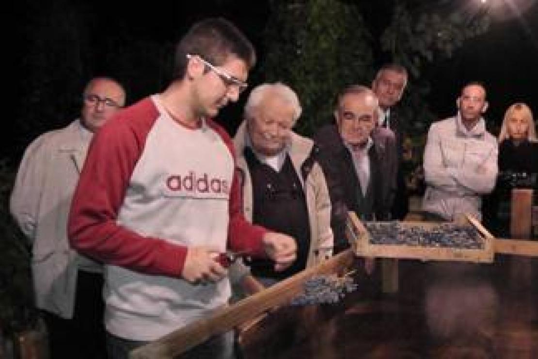 Vendemmia protagonista al Master in viticoltura organizzato da Ais Bergamo