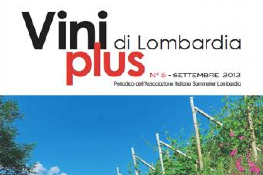 Viniplus di Lombardia - N°5 Settembre 2013