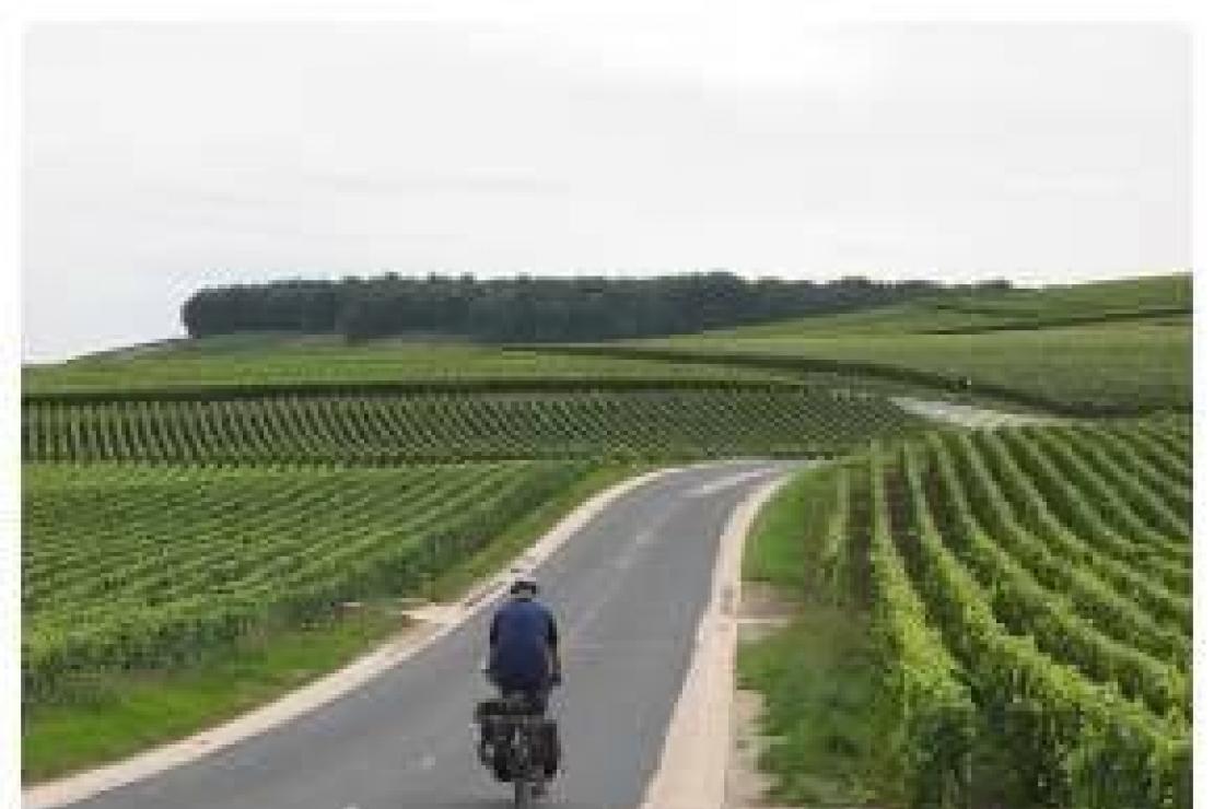 Como presenta i vignerons