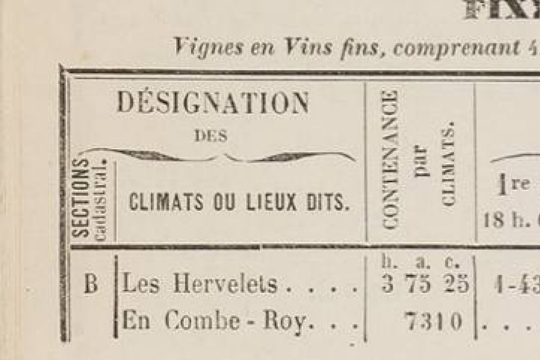 Finages di Borgogna. Viaggio tra i produttori storici