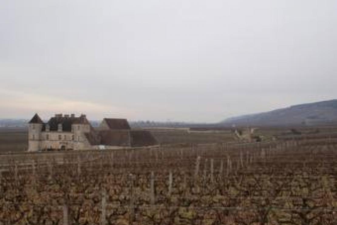 Ais Cremona-Lodi | Pinot Noir: noblesse oblige, la Bourgogne della Côte d'Or