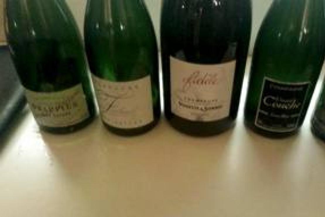 Champagne. Ais Bergamo continua il viaggio tra le vigne di Aube