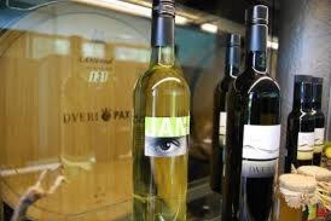 Slovenia delle meraviglie: quando il vino si fa identità di un popolo