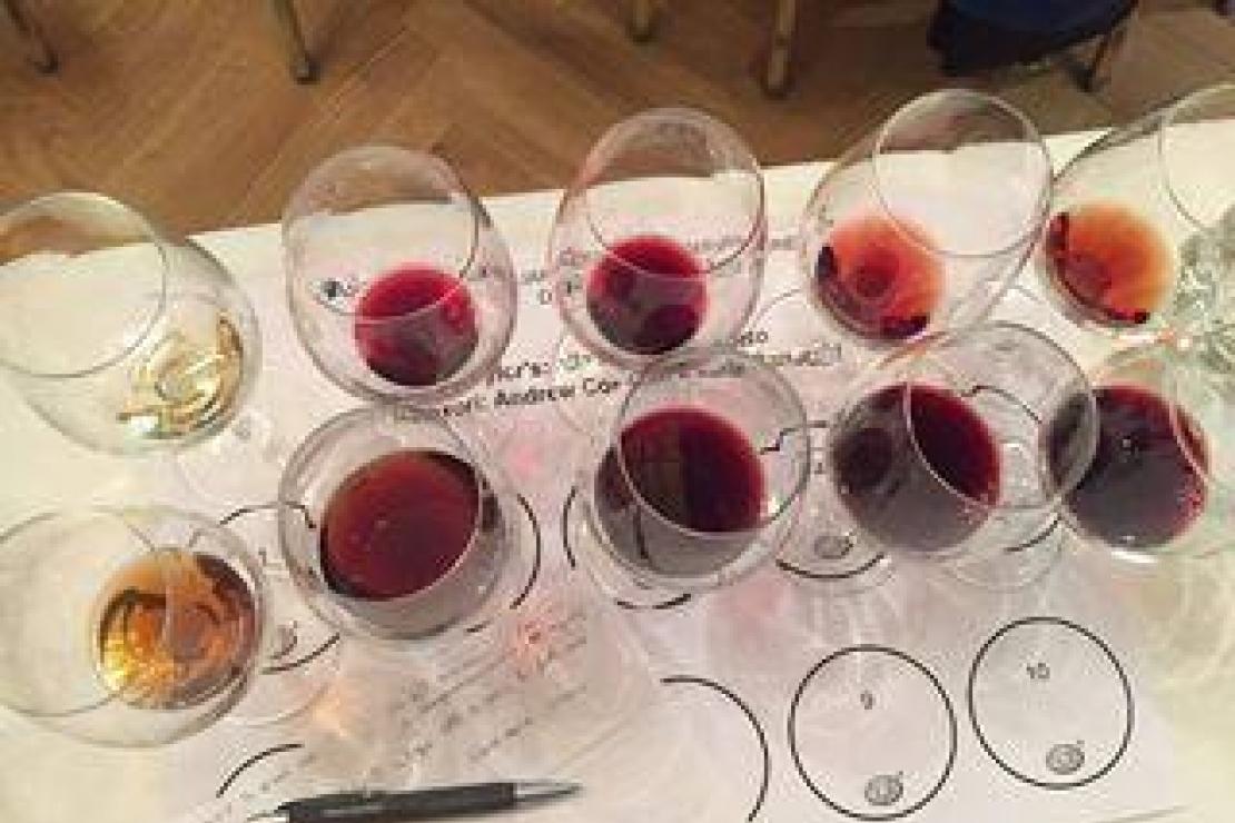 Porto's wine: una sinfonia di sapori e profumi