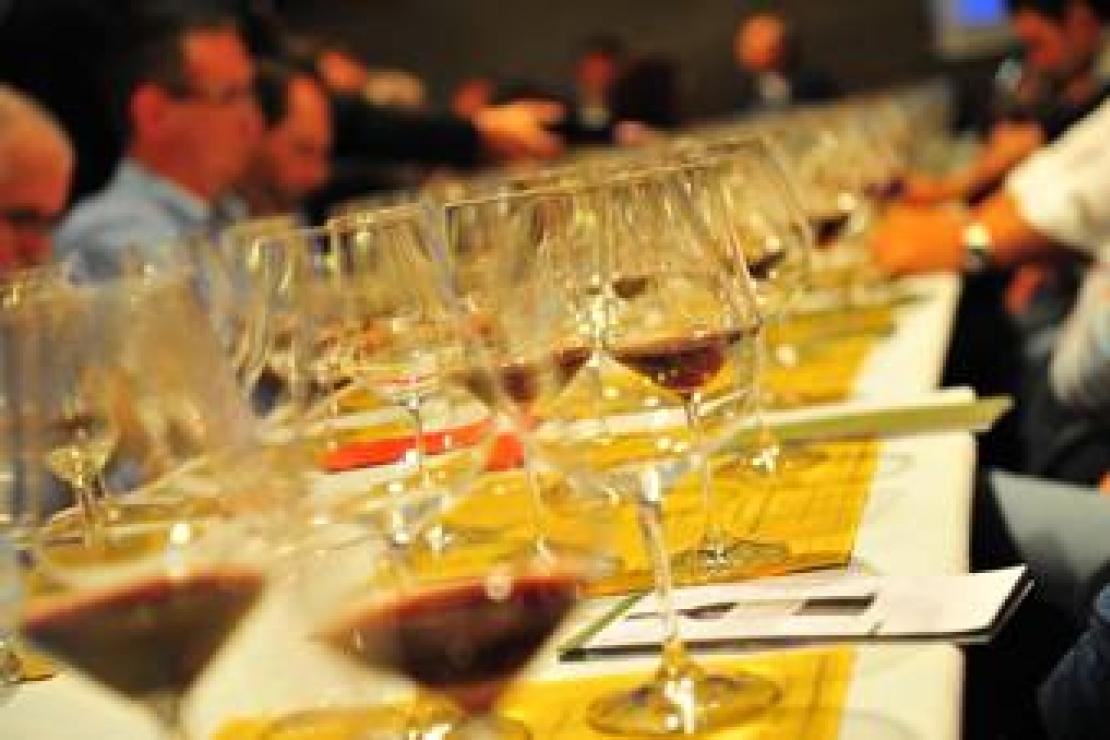 30 nuovi Diplomati per la Delegazione Ais Cremona - Lodi