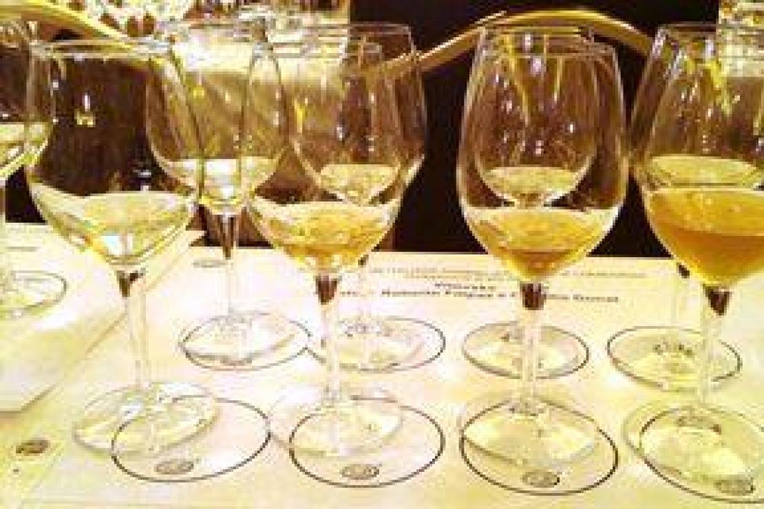 Vitovska, il vino delle rocce