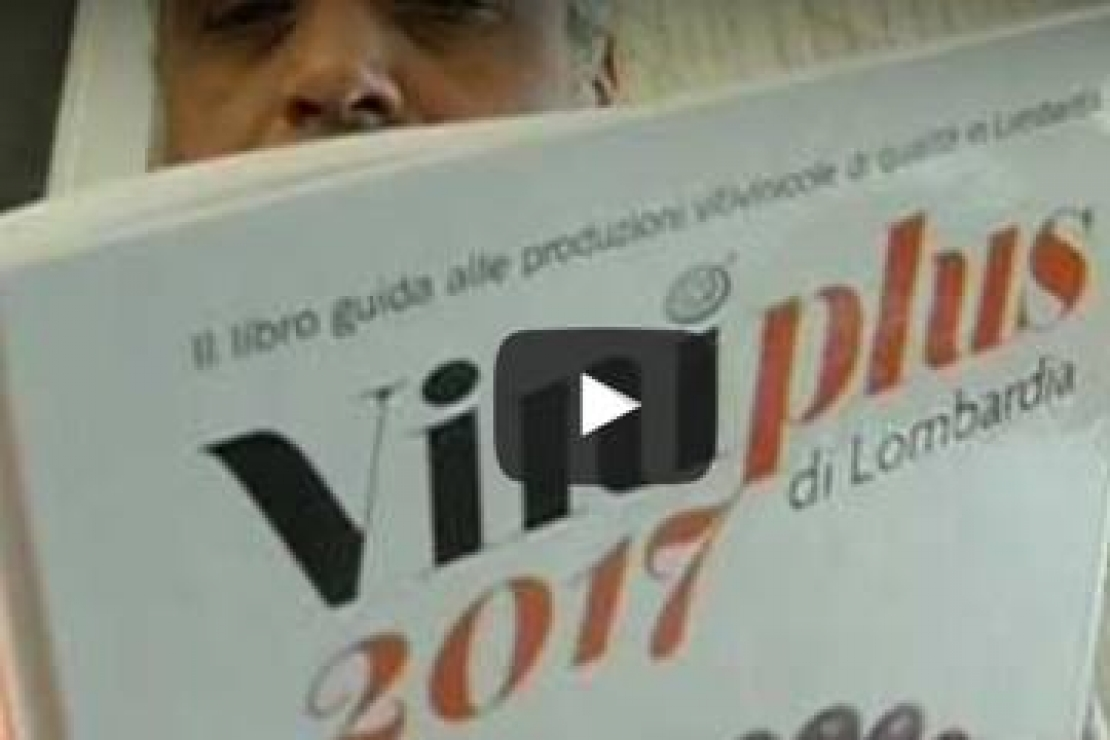 Lombardia, più vini: c'è Viniplus