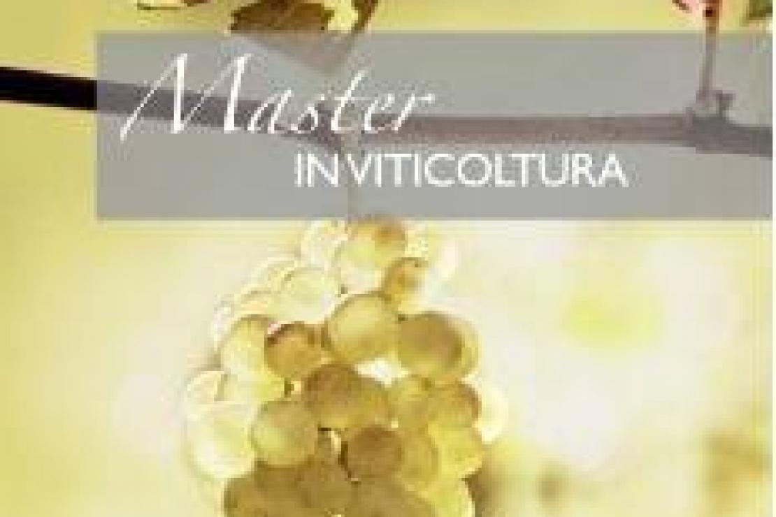Ais Milano | Al via la 14esima edizione del Master in Viticoltura