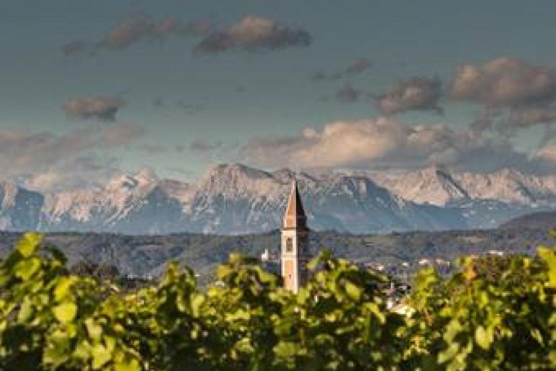 Ais Bergamo | Lis Neris Wine Experience