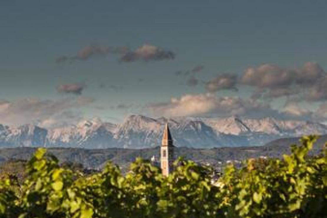 Ais Cremona-Lodi | Viaggio nel Friuli orientale e Collio Sloveno