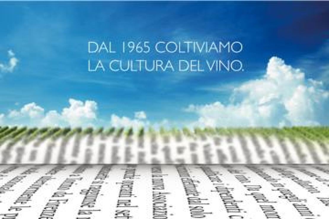 VII Giornata Nazionale della Cultura del Vino e dell'Olio