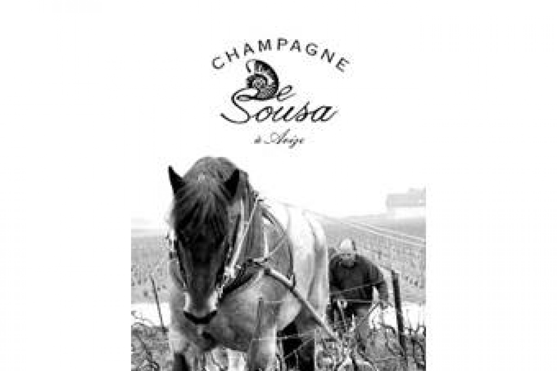 Ais Milano | Champagne De Sousa