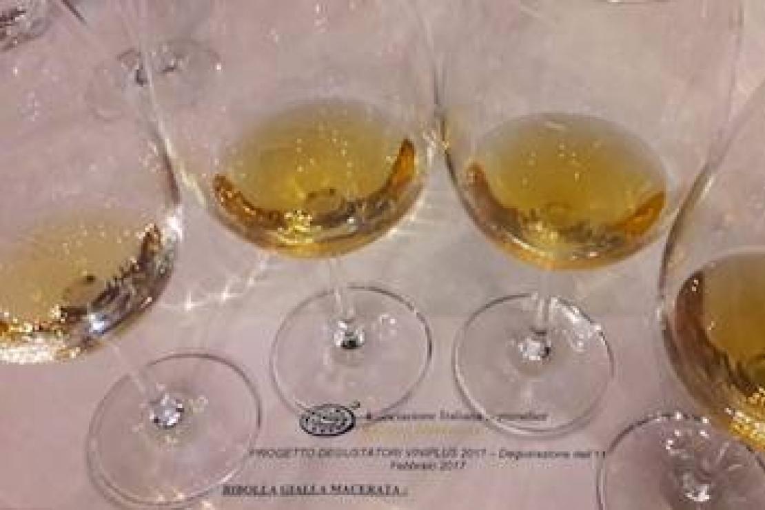 Friulano, malvasia istriana e ribolla gialla: approfondimento con i vini bianchi del Friuli-Venezia Giulia