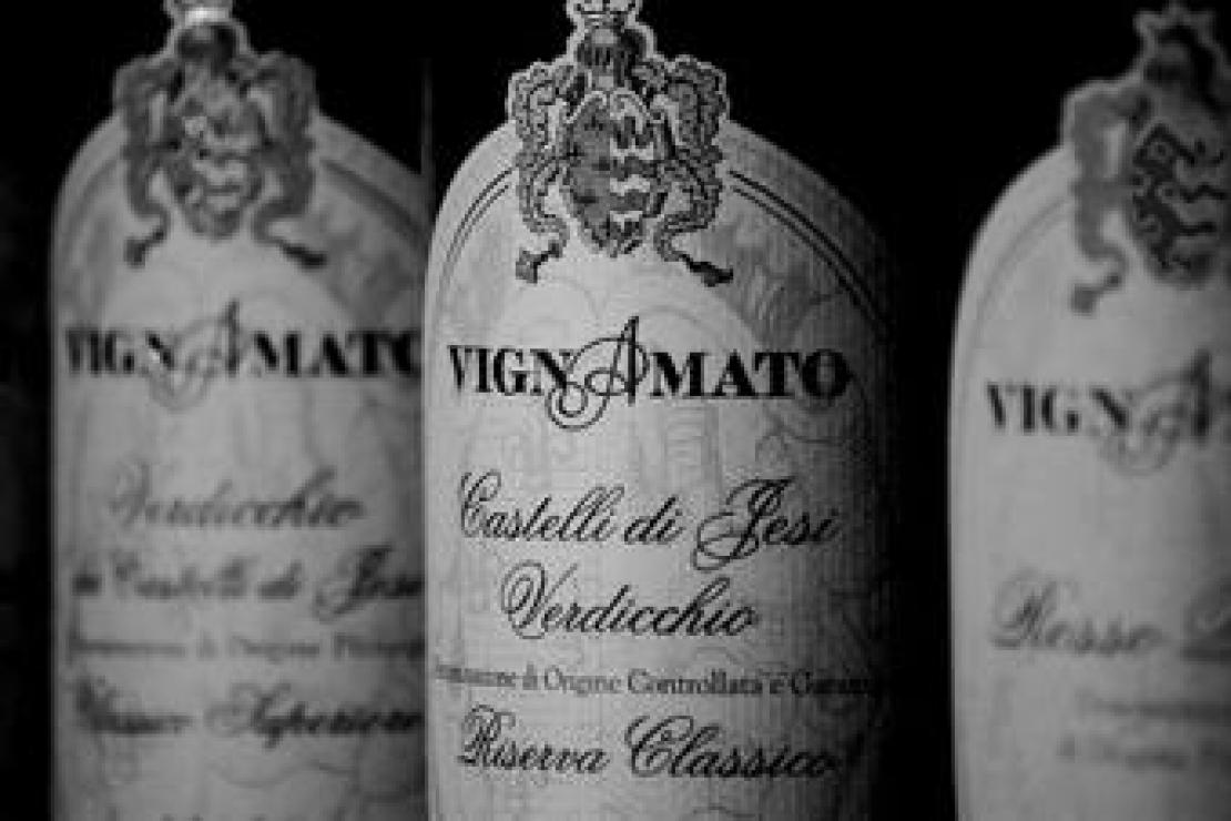 Ais Bergamo | Degustazione ragionata sui vini marchigiani