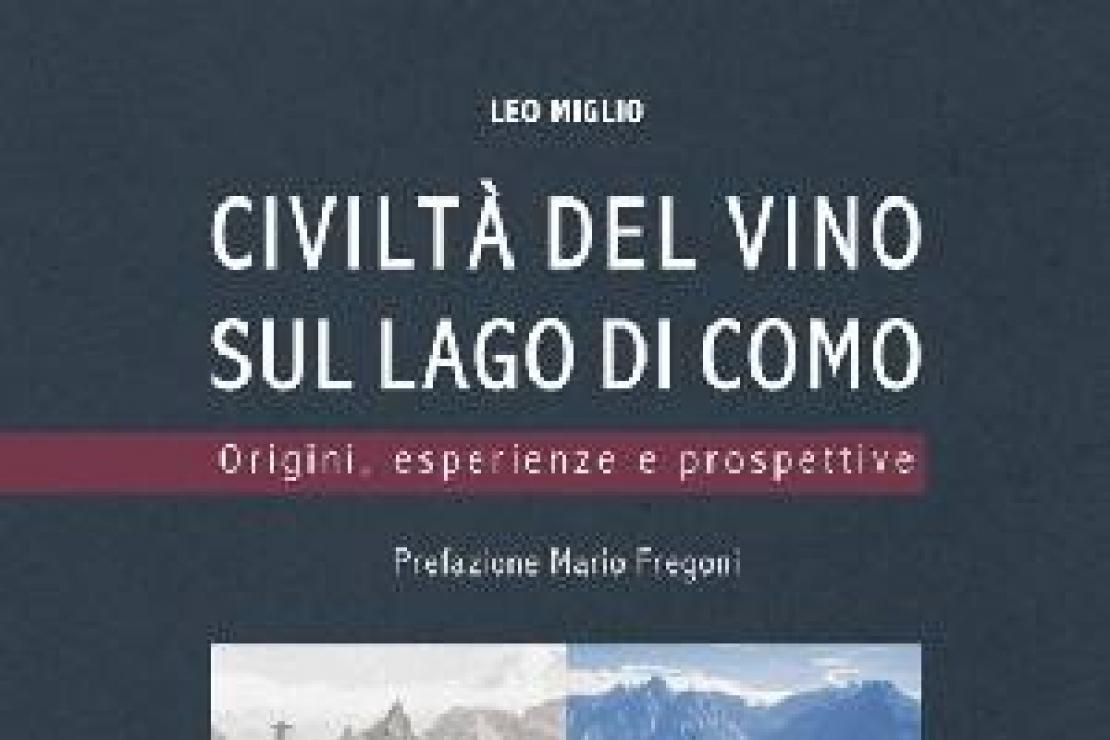 Ais Como | Civiltà del vino sul lago di Como