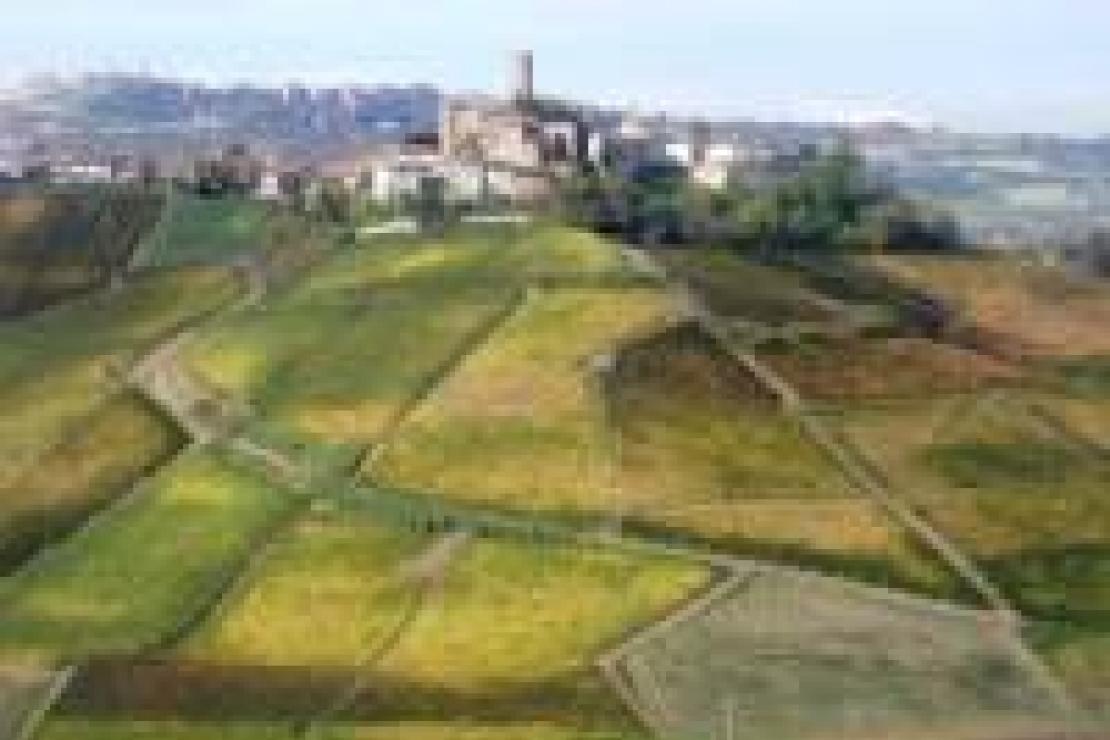 Itinerario vinoso nei Barolo di Castiglione Falletto: alcune riflessioni