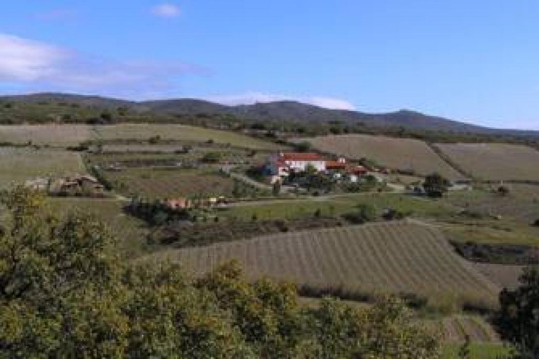 Ais Lecco | Domaine Gauby, Gran Cru de Roussillon