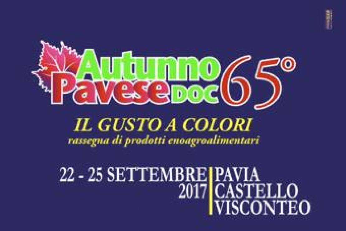Autunno Pavese Doc. Al Castello Visconteo di Pavia si celebra la 65° Edizione