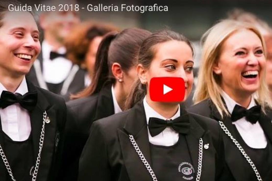 Guida Vitae 2018 - Galleria Fotografica