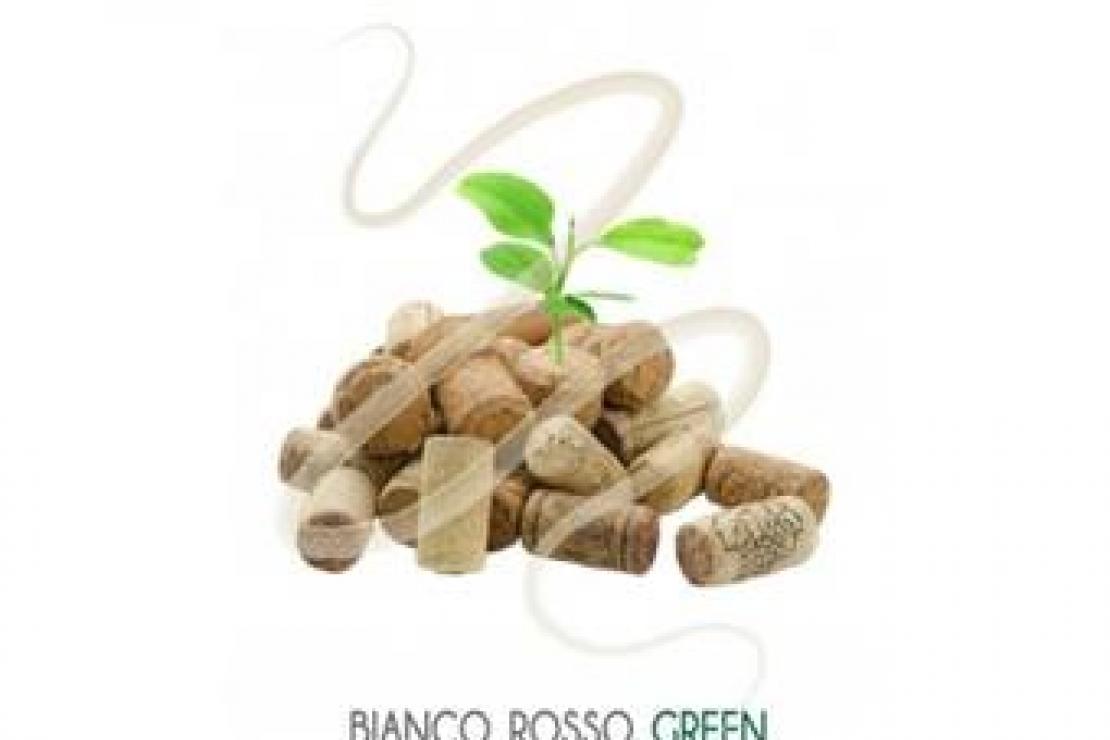 BiancoRossoGreen, il progetto ambientale dell'Associazione Italiana Sommelier in mostra a Roma