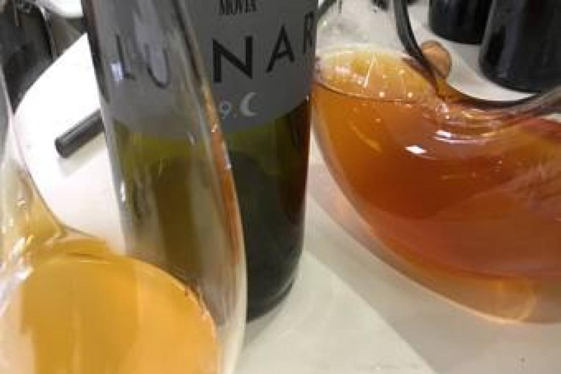 Scoprendo la Slovenia a Live Wine