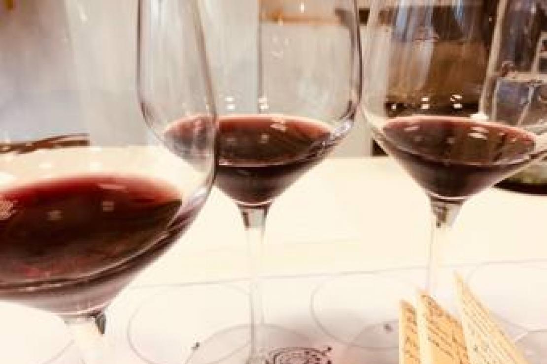 Viaggio a Nord-Est. (Ri)scoprire i vini del Friuli-Venezia Giulia
