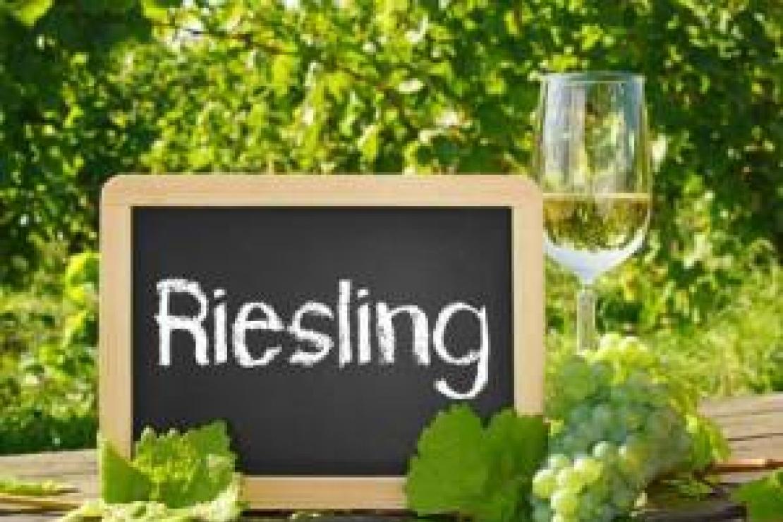 AIS Pavia | Il Riesling: il re dei vitigni a bacca bianca