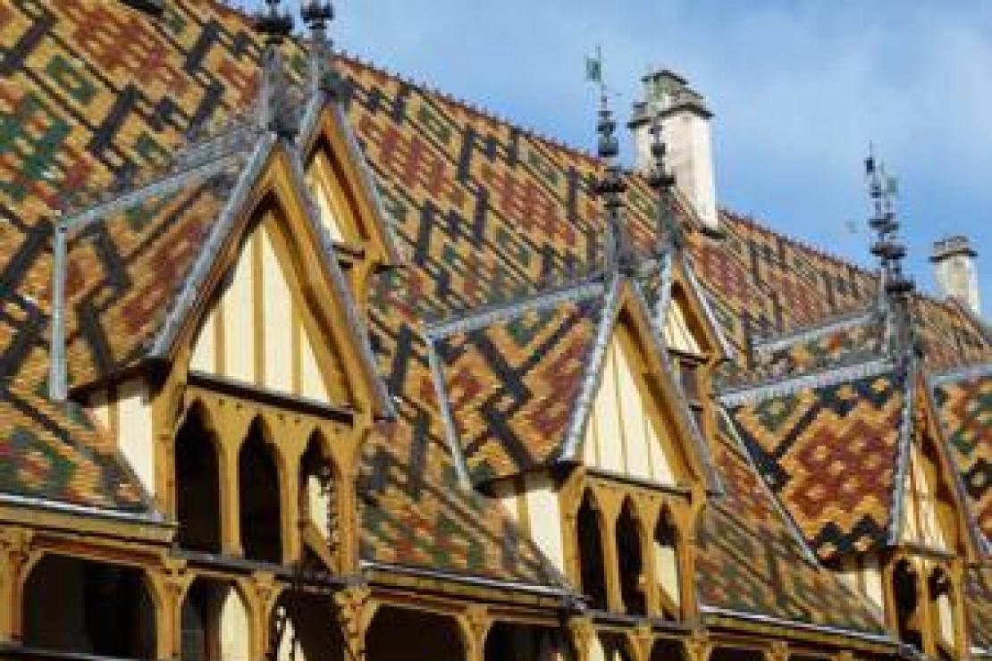 Viaggio Studio di Delegazione in Borgogna