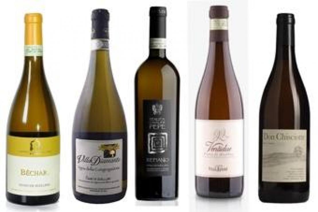 AIS Lecco | Il Fiano, vitigno campano da conoscere
