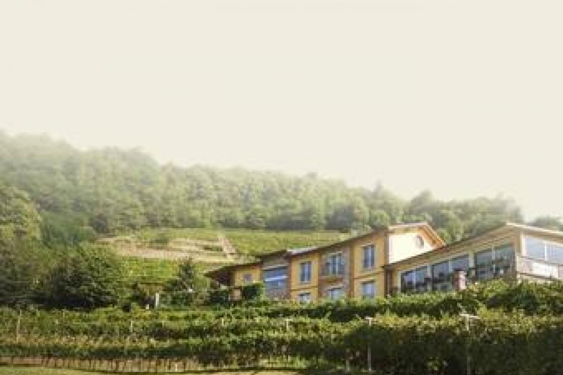 AIS Bergamo| Storie di Vigna: Casa Virginia