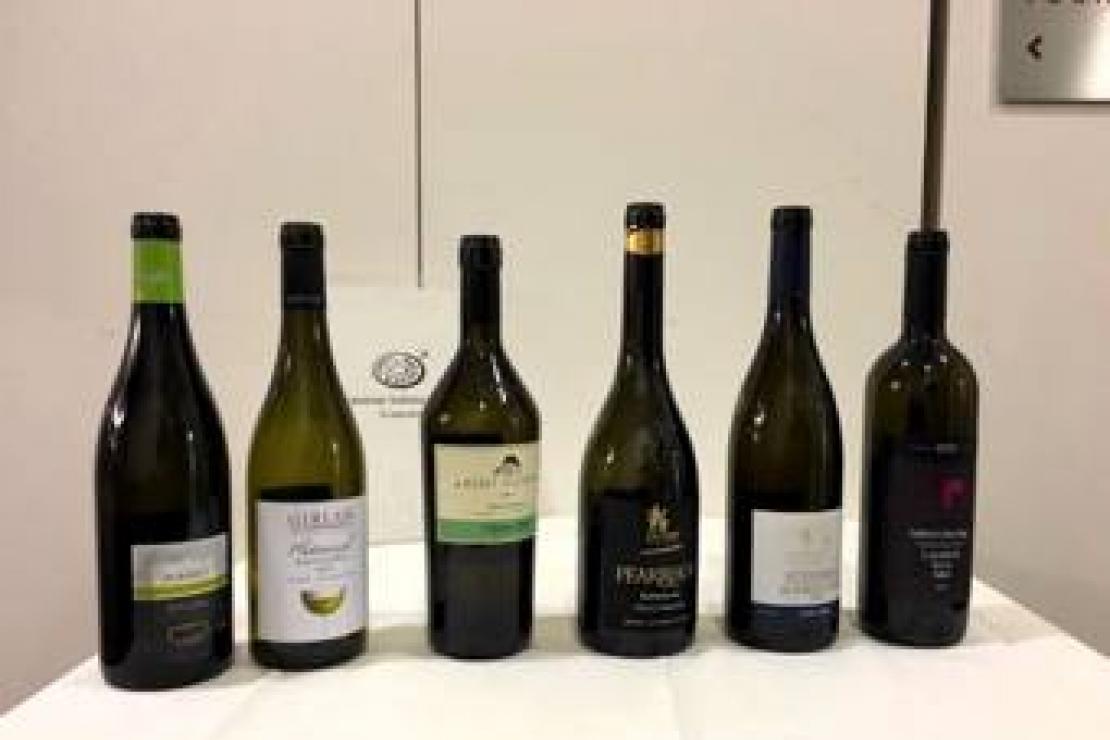 Viaggio nel mondo dei vini altoatesini