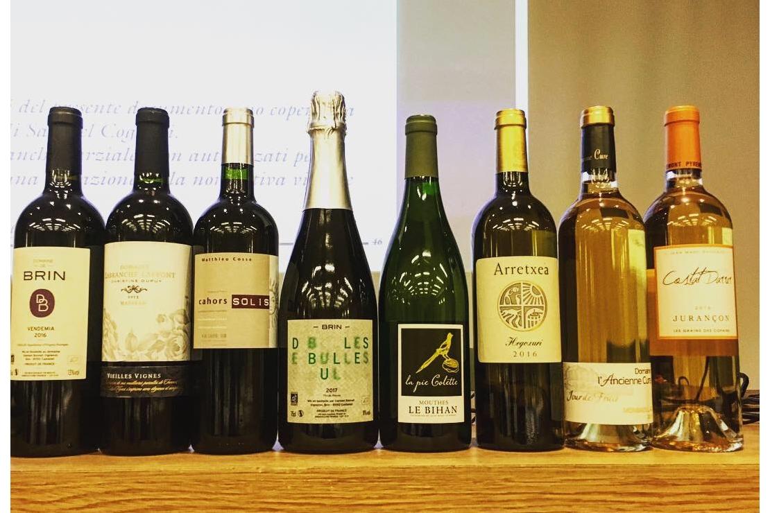 La Francia e i vini del Sud-Ovest