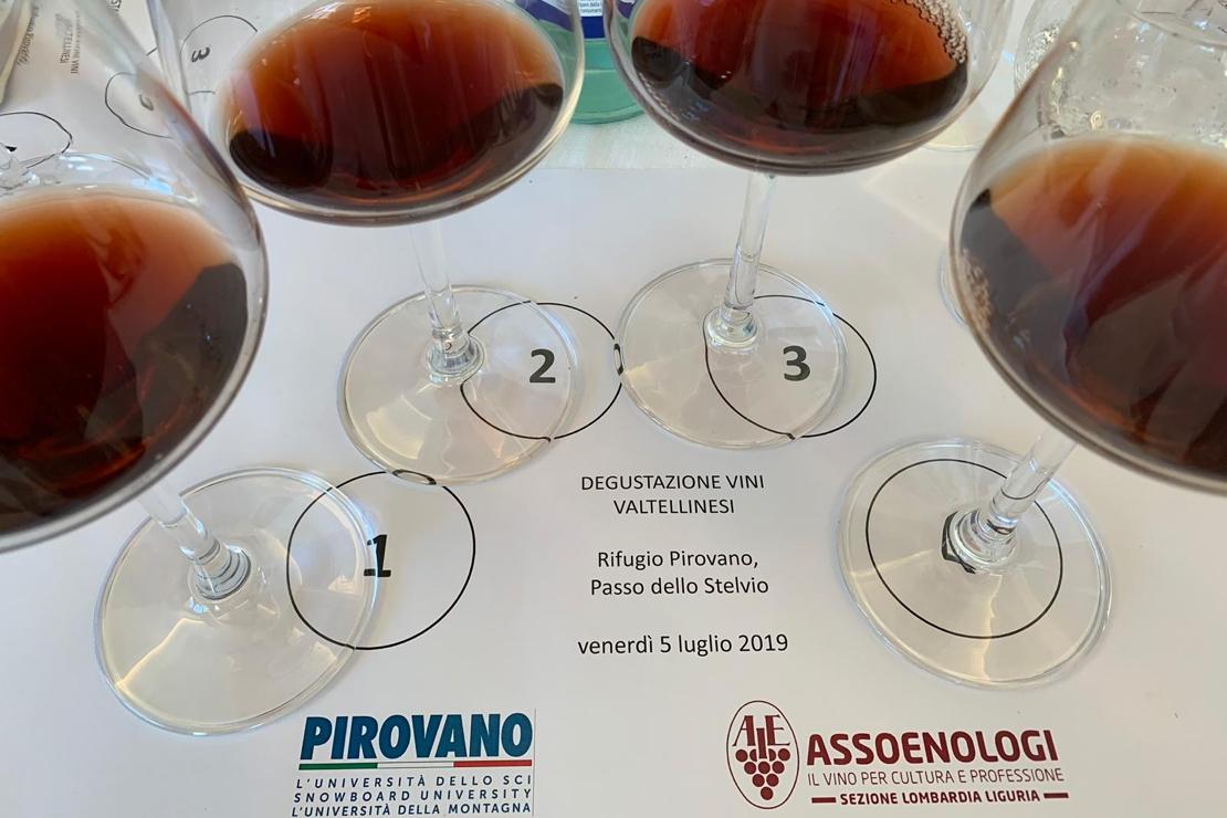 L'impatto dell'alta quota nell'affinamento. Prove tecniche di sperimentazione con i vini della Valtellina