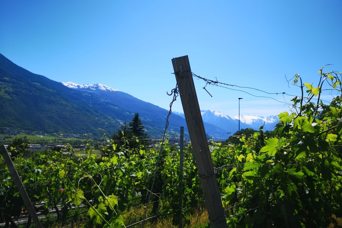 Diario di viaggio: Valle d'Aosta