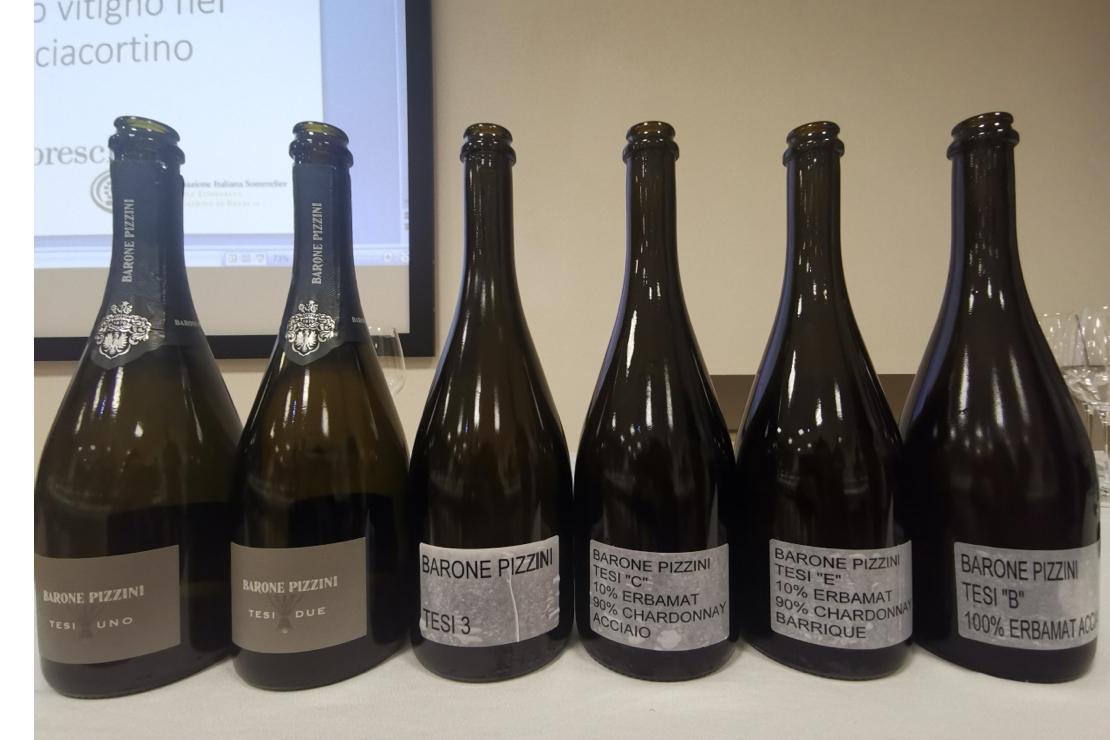 """Erbamat, un """"nuovo vecchio"""" vitigno in Franciacorta"""