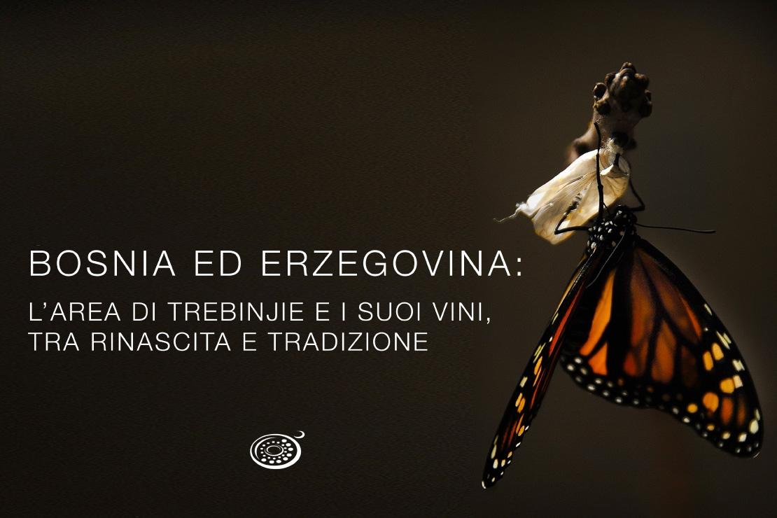 Bosnia ed Erzegovina, un territorio inesplorato e un tesoro vitivinicolo