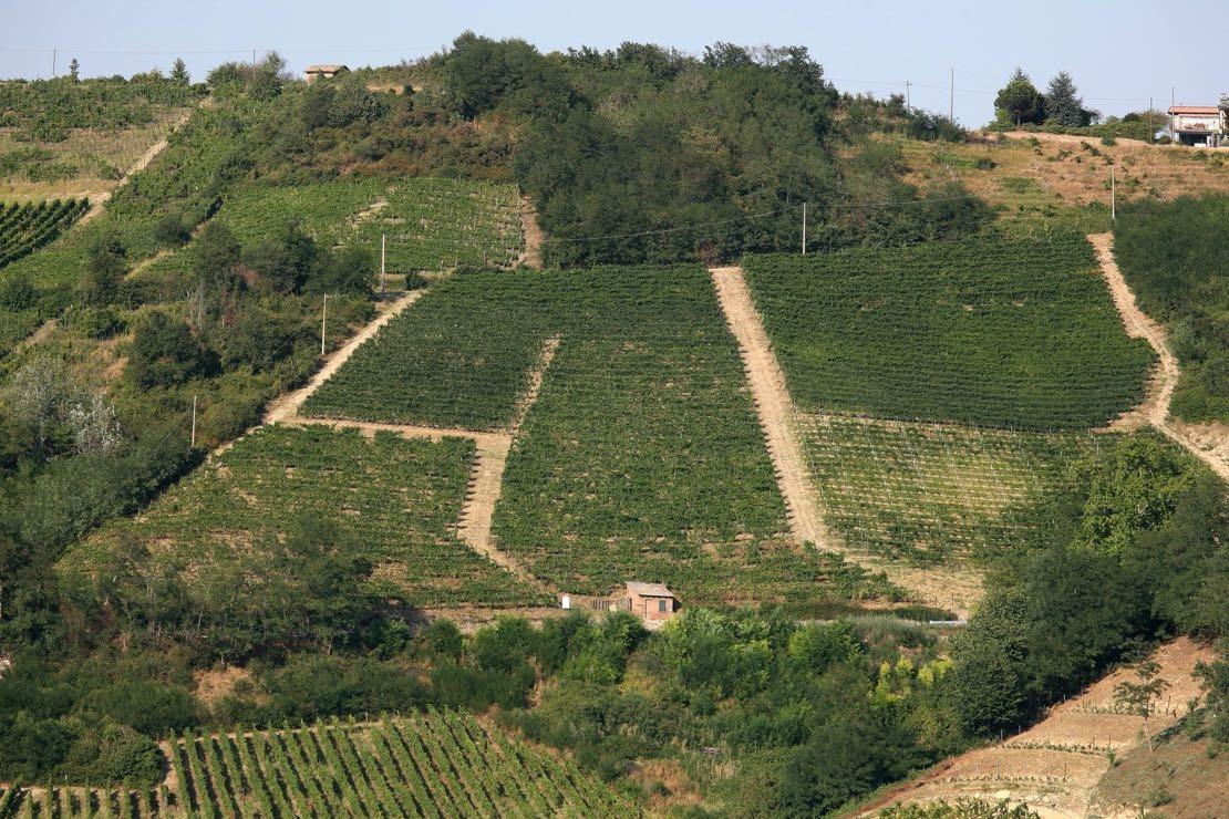 Ecco come si custodisce la bellezza dell'Oltrepò Pavese