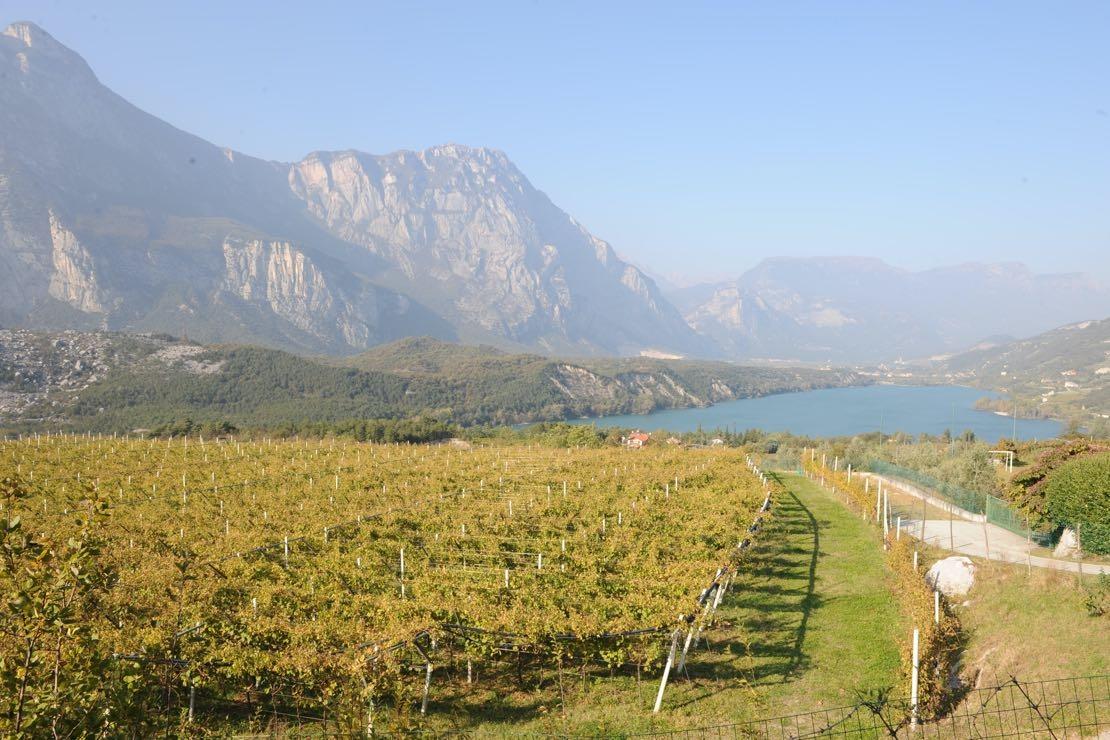 Vino Santo Trentino, il valore del tempo