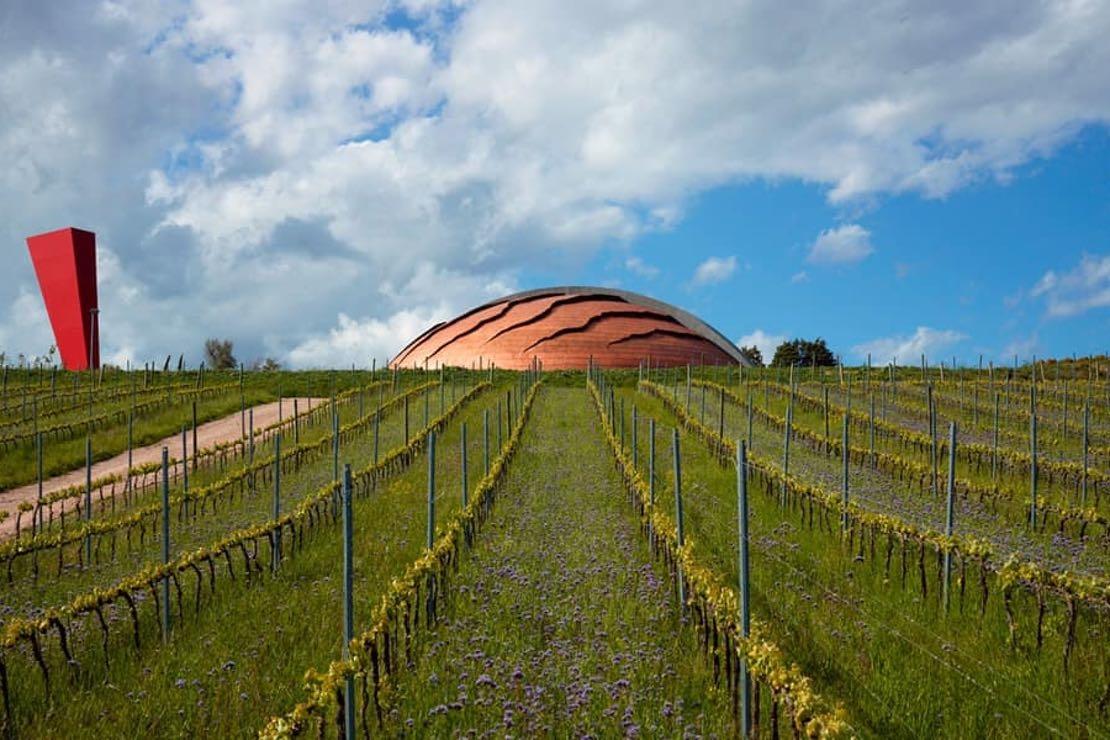 Tenute Lunelli: l'eleganza di uno stile unico tra Trentino, Toscana e Umbria