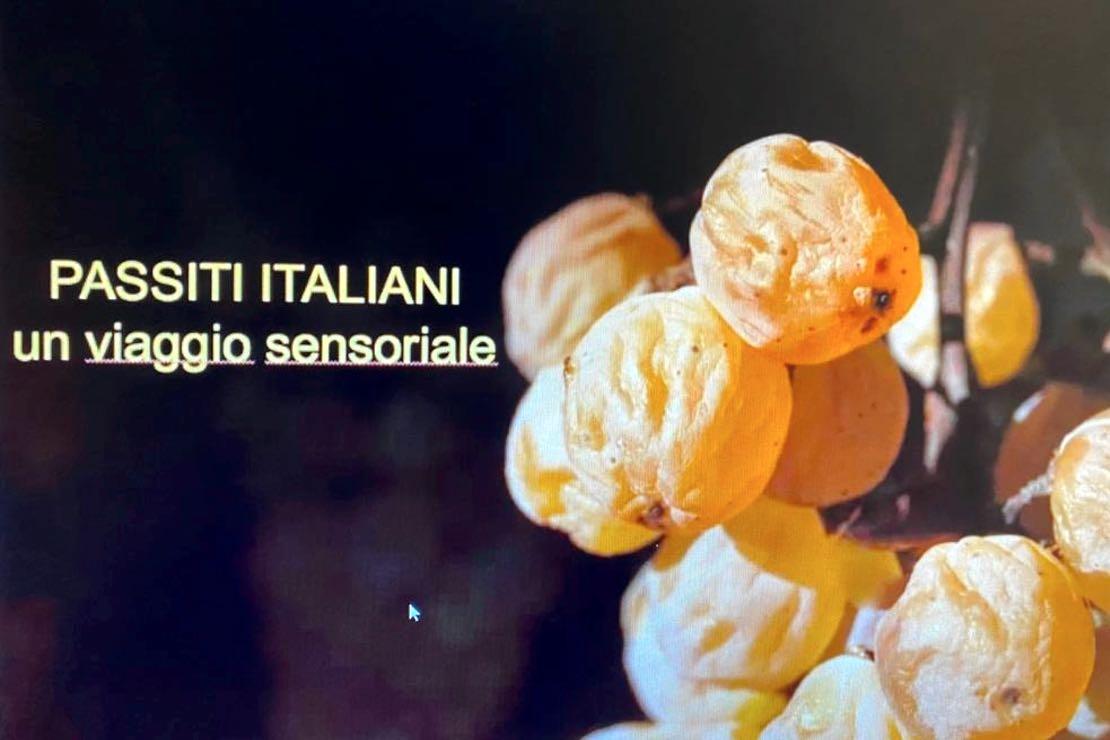 Passiti italiani. Colori, territori, espressioni