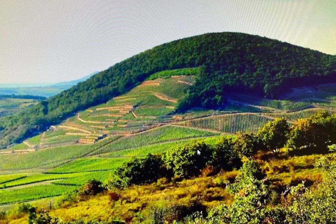 Un viaggio alla scoperta dei vini di Tokaj