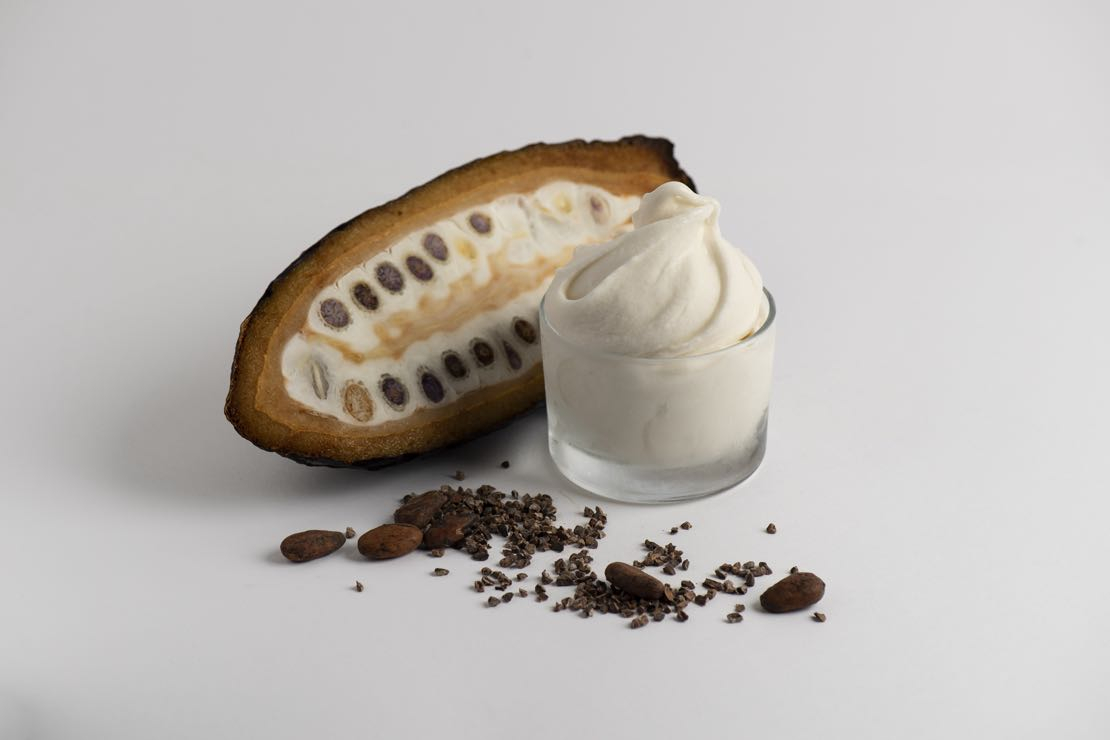 L'altra faccia del cacao