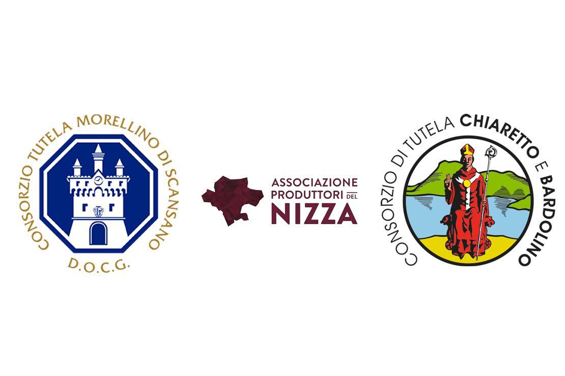 Disciplinari di produzione: novità per Morellino di Scansano DOCG, Bardolino DOC e Nizza DOCG