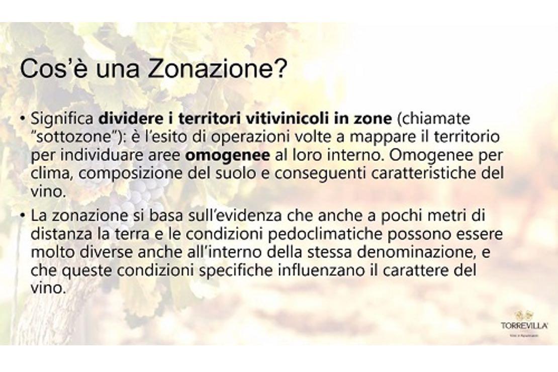 La zonazione come strumento di programmazione per la viticoltura di un territorio