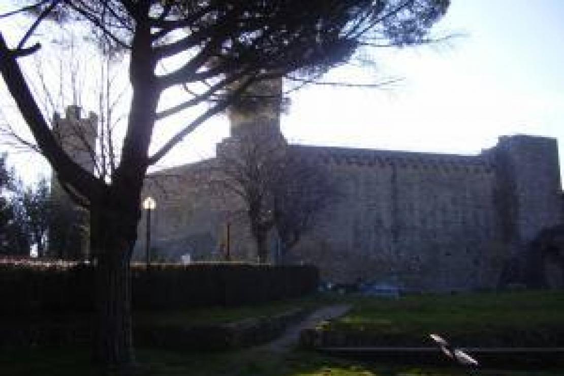 Brunello di Montalcino a confronto