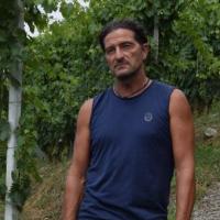 Alfio Mozzi