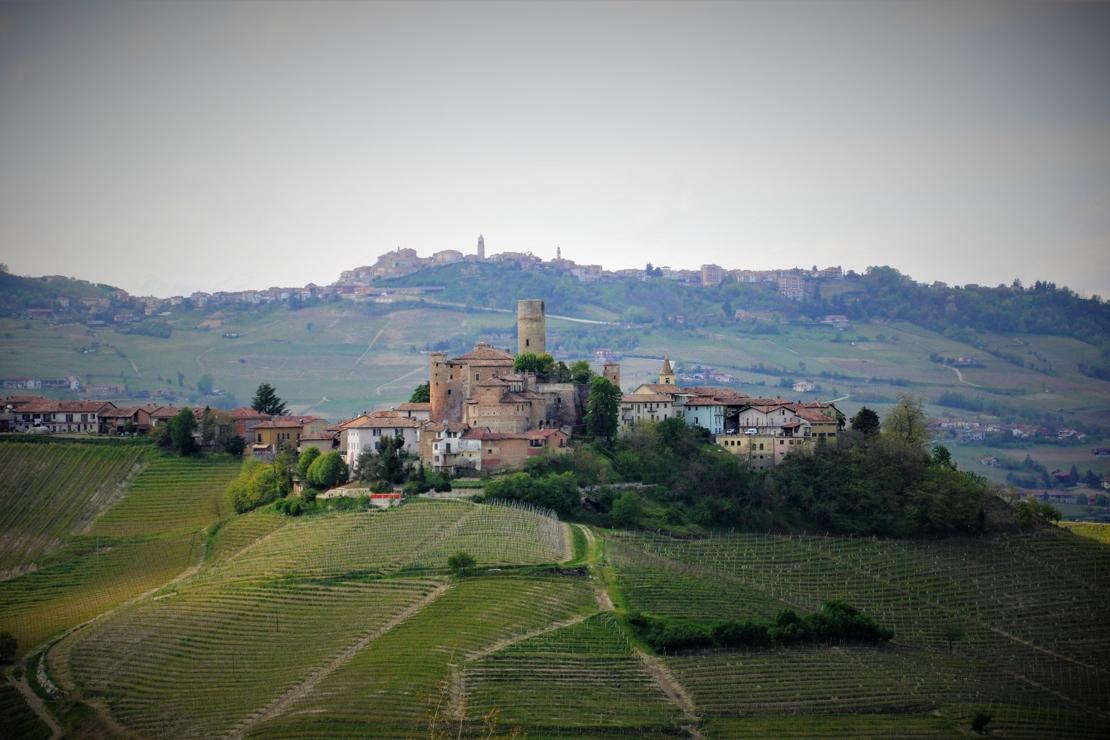 Il Nebbiolo del Piemonte da Carema a Barolo