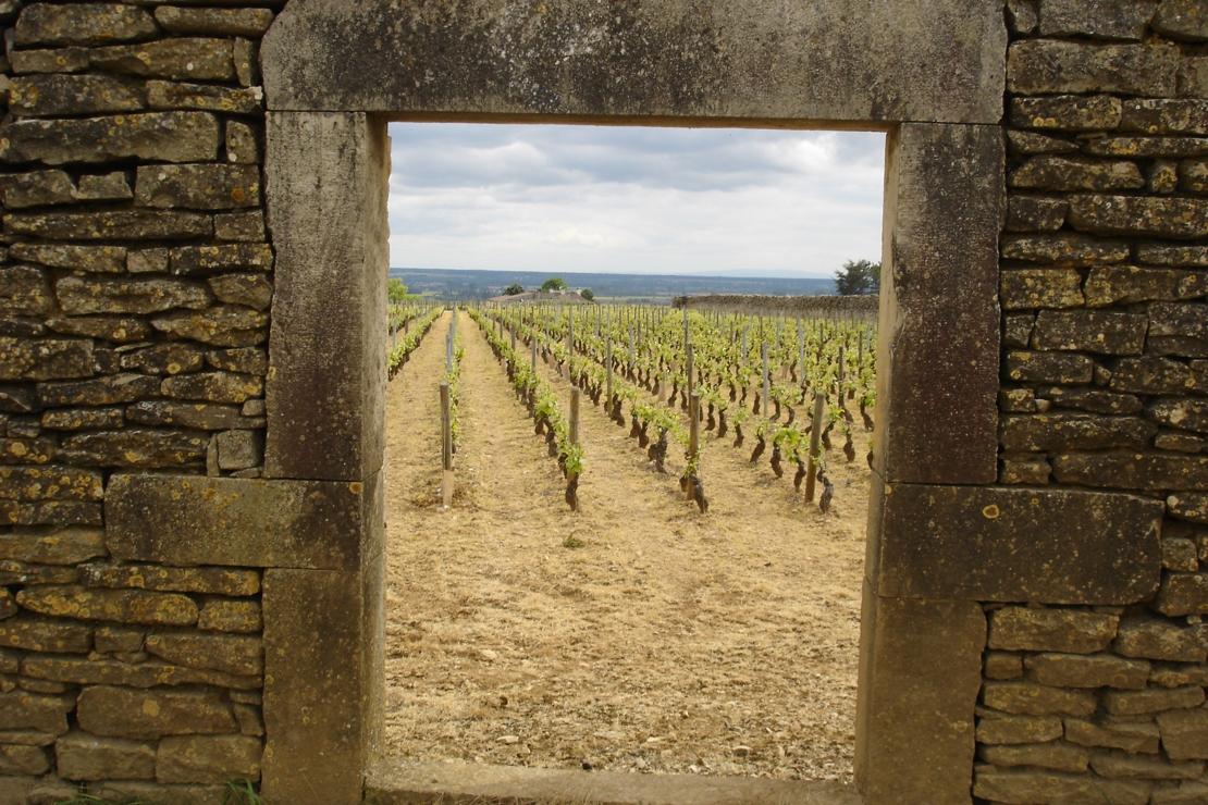 Tesori nascosti della Borgogna classica